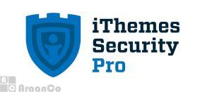 افزونه فوق امنیتی وردپرس